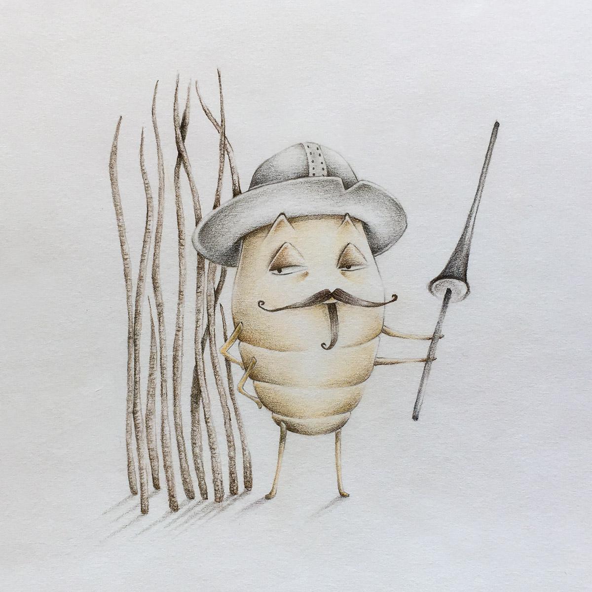 Messer Pidocchio